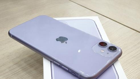 Tin tức công nghệ mới nhất ngày 5/12: Màn hình iPhone 11 của Apple sẽ được thay miễn phí vì lỗi cảm ứng