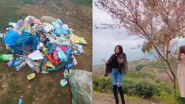 Đồi chè Ô Long (Sa Pa) buộc phải đóng cửa do nhiều du khách vô ý thức thi nhau xả rác, rung cây làm rụng hoa