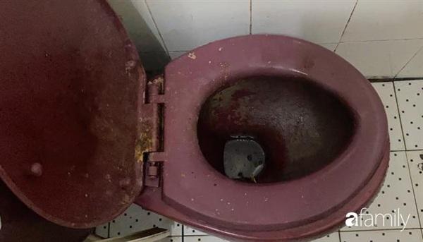 Con rắn đã biến mất khỏi nhà vệ sinh.