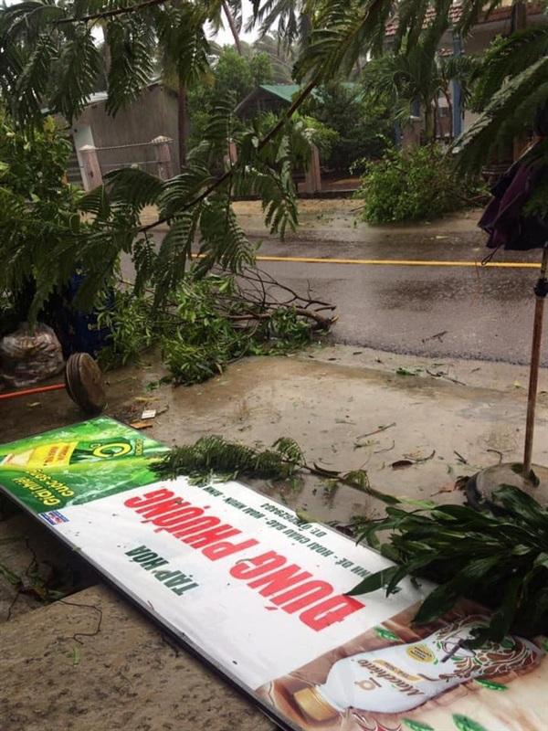 Cây cối, biển quảng cáo bị đổ la liệt vì gió mạnh (Nguồn: Facebook)