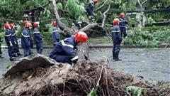 Thêm 2 nạn nhân tại Thừa Thiên – Huế tử vong vì bão số 5