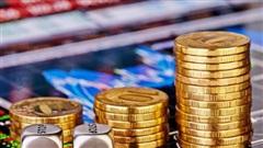 Chứng khoán ngày 24/9: Dòng tiền quay trở lại nhóm cổ phiếu 'trụ'
