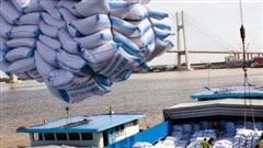 Philippines ngừng mua, giá gạo xuất khẩu giảm mạnh