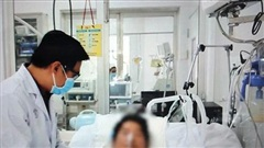 Bệnh nhân ngộ độc Pate Minh Chay tiến triển khả quan