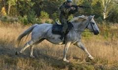 Chiêm ngưỡng nhan sắc 'hút hồn' nhưng đầy mạnh mẽ của các 'bóng hồng' quân đội Nga trên lưng ngựa