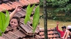 Xót xa hình ảnh người mẹ cùng con 1 tháng tuổi kẹt trong nhà, dỡ ngói kêu cứu giữa biển nước lũ