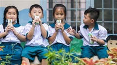 Hậu Giang mở rộng phạm vi thí điểm Sữa học đường