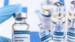 EU cảnh báo về vaccine Covid-19 ở châu Âu