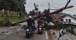 Phố núi Đà Lạt ngổn ngang cây đổ do bão số 9