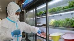 Lấy mẫu xét nghiệm SARS-CoV-2 với thực phẩm nhập khẩu từ các nước đang có dịch COVID-19