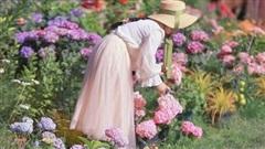 Cô gái trẻ bỏ phố về sống những ngày đẹp như mộng khi cải tạo mảnh đất trên núi thành khu vườn ngập tràn sắc hoa