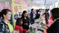 Chương trình Mỗi xã một sản phẩm: Nông dân tích cực vào cuộc