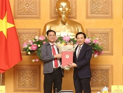 Đồng chí Trần Văn Sơn được chỉ định làm Bí thư Đảng ủy VPCP