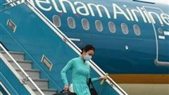 Đình chỉ trưởng đoàn tiếp viên hàng không của Vietnam Airlines