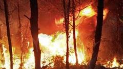 Rừng Nghệ An và Hà Tĩnh lại bốc cháy ngùn ngụt trong đêm, di dời hàng trăm hộ dân ở chân núi