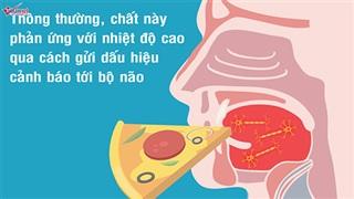 Ăn cay ảnh hưởng thế nào đến bộ não và cơ thể?