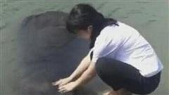 Hãi hùng cô gái rửa tay bên sông, đột ngột bóng đen bí ẩn dưới nước trồi lên và cái kết khiến bao người đau tim