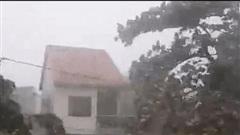Tin bão khẩn cấp cơn bão số 8