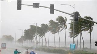 Video: Sức gió khủng khiếp của siêu bão số 9 khi đổ bộ