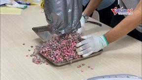 Thu giữ hơn 20kg ma túy trong các lô hàng quà biếu