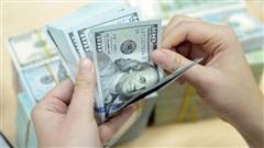 ĐỪNG LỠ ngày 26/11: Cảnh báo mô hình đầu tư 'mở mắt đã thu được 1 tỷ' mà nhiều người đang sa chân vào; Hồng Quế nghi ngờ vụ giải ngân 178 tỷ của Thủy Tiên