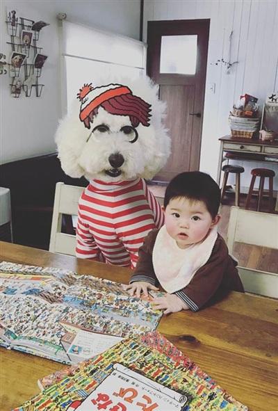 Cặp đôi chú cún khổng lồ và cô bé 2 tuổi dễ thương hết nấc làm tan chảy mạng xã hội 0
