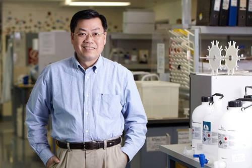 Giáo sư Nguyễn Văn Tuấn, Viện Garvan (Australia).