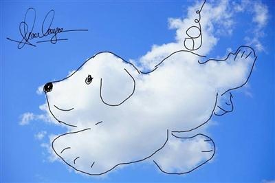 Chú chó tai dài đang thỏa sức bay lượn giữa bầu trời thế này đây