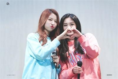 Nayoung và Pinky sau khi debut với Pristin thì hầu như không có hoạt động riêng. Pristin đến nay đã gián đoạn hoạt động gần 2 năm và Pinky cũng có dấu hiệu bỏ cuộc tại thị trường Hàn mà quay trở về Trung Quốc