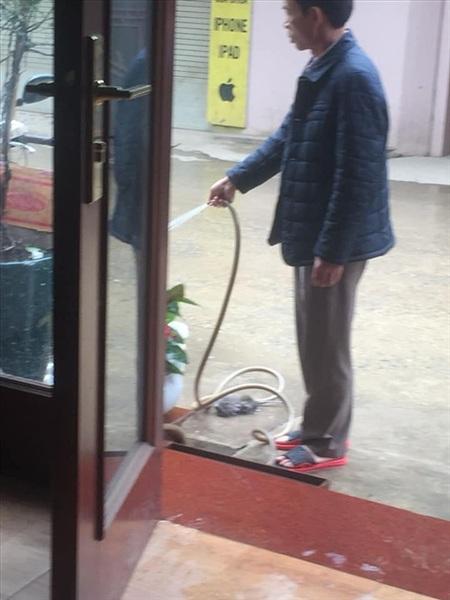 Hay khiến chúng khó hiểu, như việc chăm chỉ rửa sân vài lần một ngày chẳng hạn... (Ảnh: Phương Anh)