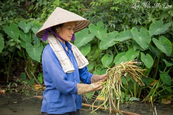 Từng góc quay đều là những thước phim chân thực nhất về cuộc sống tại làng quê với những món ăn bình dịđi vào lòng người dưới bàn tay khéo léo của người nông dân.