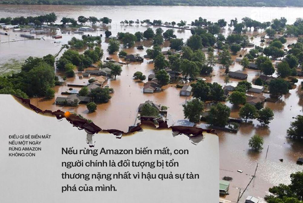 Nếu rừng Amazon biến mất, thế giới mất đi 20% lượng nước ngọt, 20% lượng oxy, con người chịu ảnh hưởng trực tiếp 5