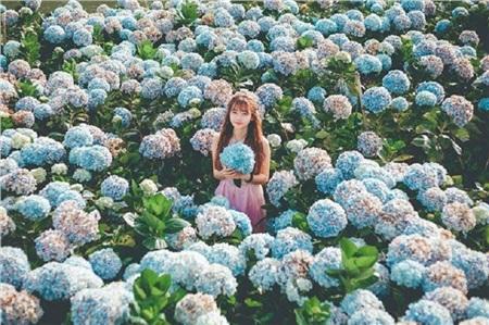 Tháng 10 đến rồi, 'tút tát sương sương' để đi check-in với những loài hoa tuyệt sắc ngay nào! 11