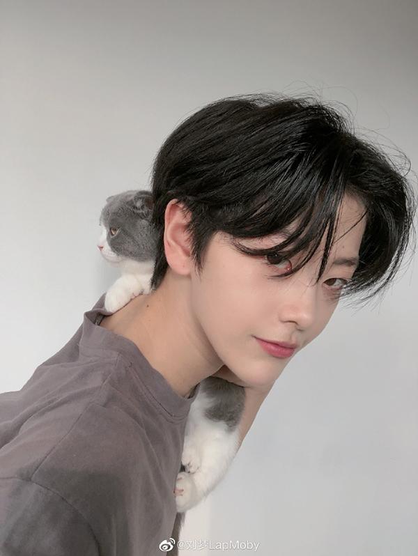 Em gái Lưu Mộng.