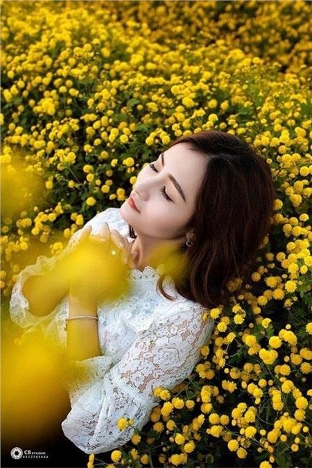 Ngỡ ngàngmùa sen giữa trời đông, cúc vàng, lau đẹp như tranh ở Ninh Bình 9
