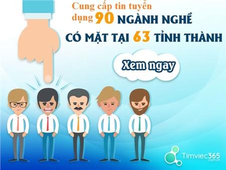 Timviec365.com.vn - Nơi bạn có thể đáp ứng mọi nhu cầu tìm việc