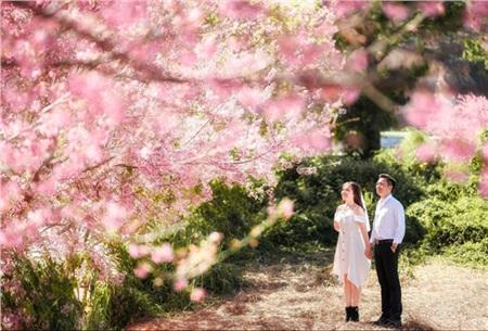 Mãn nhãn những bộ ảnh cưới gọi xuân về, nhìn là chỉ muốn lấy chồng ngay thôi! 4