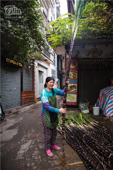 Trong văn hóa Tết của người Việt từ bao đời này, hình ảnh cây nêu luôn là biểu tượng thiêng liêng gắn liền với Tết Nguyên đán cổ truyền của dân tộc.