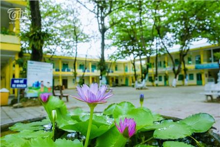 'Kì nghỉ Tết dài nhất lịch sử': Trường học vắng hoe như mùa hè đã đến rồi vậy! 10