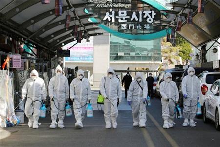 Các nhân viên y tế phun thuốc khử trùngmột khu chợ ở thành phố Daegu ngày 23/2 - Ảnh: AFP
