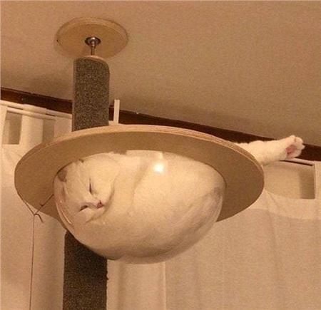 Một viên ngọc trắng đang treo lơ lửng trên trần nhà!