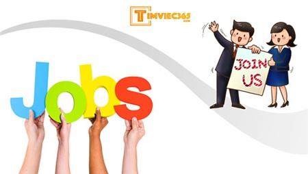 Tìm việc làm trong thời kỹ thuật số - Điều tốt đẹp từ timviec365.com! 1