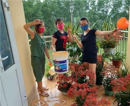 Mọi người cùng nhau trồng hoa để ngôi trường thêm màu sắc hơn.