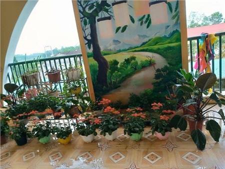 Bên trong khu cách ly ở trường mầm non Hà Tĩnh: Mọi người rủ nhau dọn dẹp, trồng rau, làm vườn 2