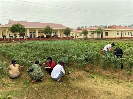 Bên trong khu cách ly ở trường mầm non Hà Tĩnh: Mọi người rủ nhau dọn dẹp, trồng rau, làm vườn 5