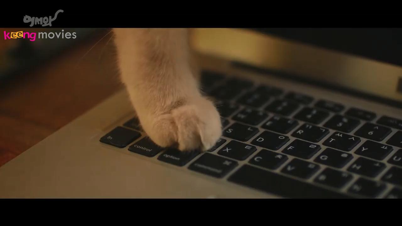 'Măng cụt' của Hong Jo chạm vào bàn phím