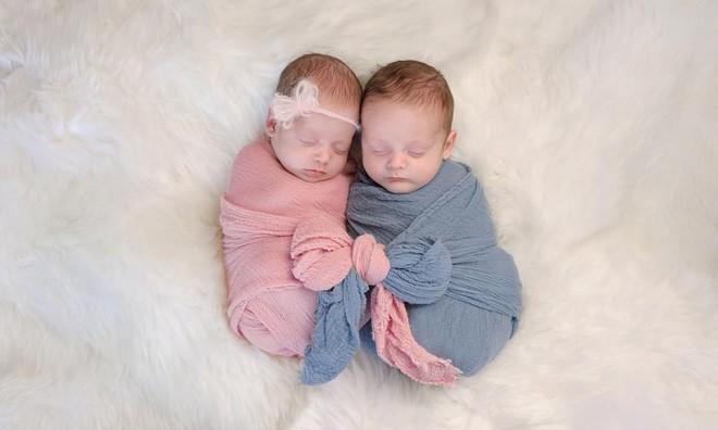 Những đứa trẻ sinh đôi: Bí ẩn tiến hóa hay chỉ là một tai nạn tình cờ? 0