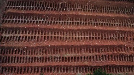 Công nhân làm việc 12 tiếng/ngày để đào mồ chôn tập thể nạn nhân COVID-19 0