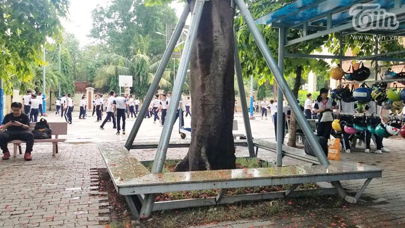 Học sinh vui đùa giữa sân trường.