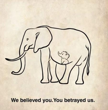 Những bức tranh của cư dân mạng thế giới bày tỏ sự tiếc thương với 2 mẹ con voi và lên án hành vi này của con người.